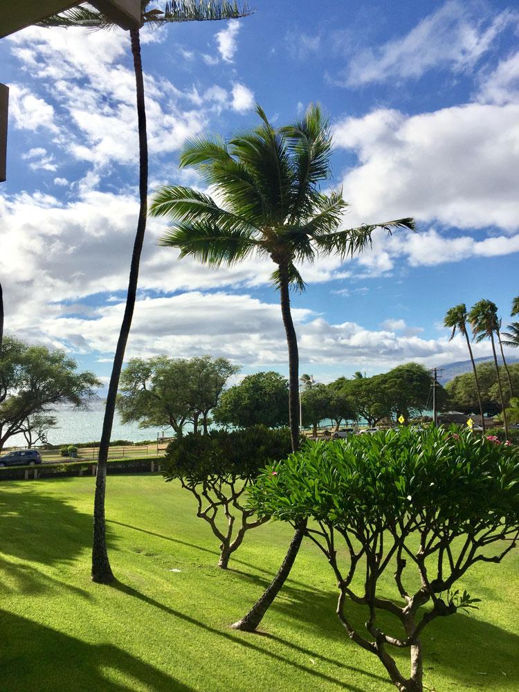 Maui Hawaii Condo Rentals
